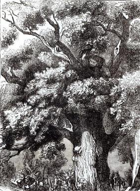 Charles II (1630-85) Hidden in the Oak Tree, 14th October 1651 (engraving) (b&w photo) 18th