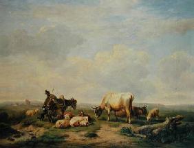 Kunstdruck von Eugène Joseph Verboeckhoven - Herdsman and Herd