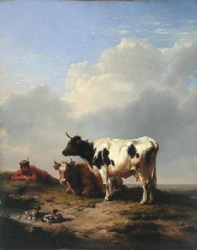 Kunstdruck von Eugène Joseph Verboeckhoven - Midday Rest