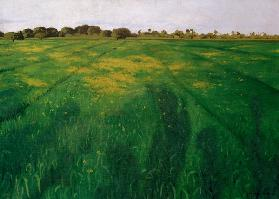 Vallotton / Green oat-field / 1912
