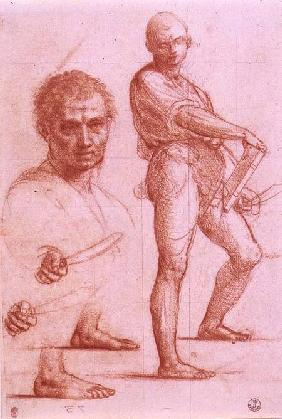 Study of a male holding a sword and a book, the sword and feet rehearsed twice, and a male head and a male