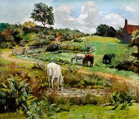 Horses Grazing in a Landscape