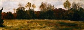Sketch for a Landscape, c.1890 (oil on canvas) 19th