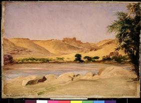 View on the Nile, c.1879 (oil on canvas) 19th