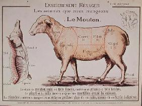 Mutton: diagram depicting the different cuts of meat (colour litho) 1818