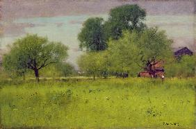 Apple Orchard 1892