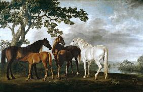 Mares and Foals in a River Landscape 1768