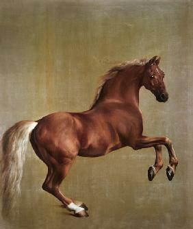 """Whistlejacket"" 1762"