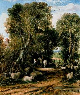Pastoral Scene with sheep