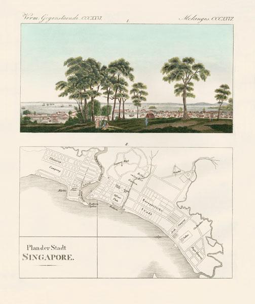 View and map of the East Indian establishment Singapore