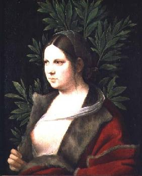 Portrait of a Young Woman (Laura) 1506
