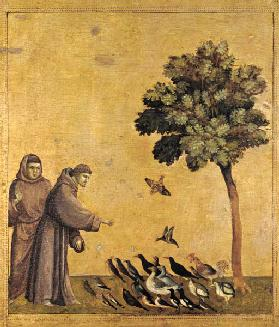 St. Francis of Assisi preaching to the birds 13th