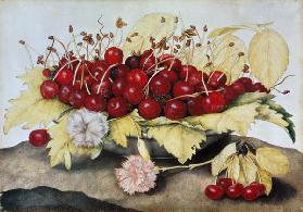 Cherries and Carnations (w/c on parchment)