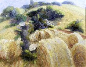 Harvest, 1995 (oil on canvas)