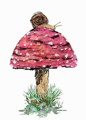 Fly Agaric Toadstool And Snail 2019