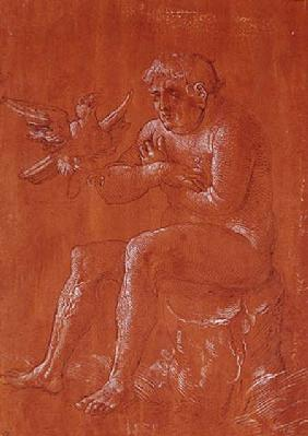 Nude man sitting on a tree trunk listening to a parrot (pen & ink and white chalk on red paper)