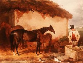 "The Mare ""Perhaps"" with her foal 1846"