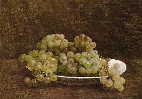 Still Life of Grapes 1890