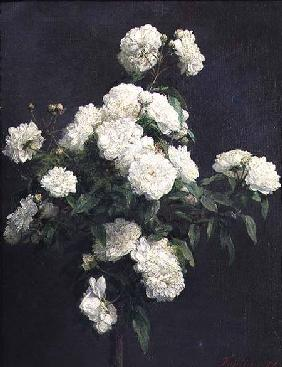 Still Life of White Peonies 1870
