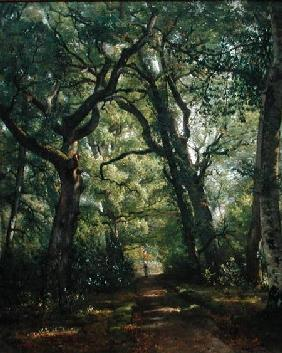 Path in the Forest 1864