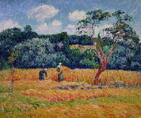 Figures harvesting a wheat field (oil on canvas) 14th