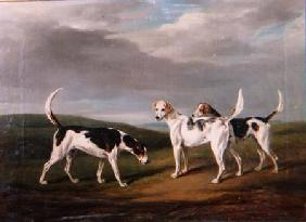 Foxhounds in a Landscape 1818