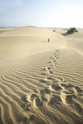 footsteps at the desert
