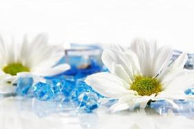 Wellness and aromatherapy