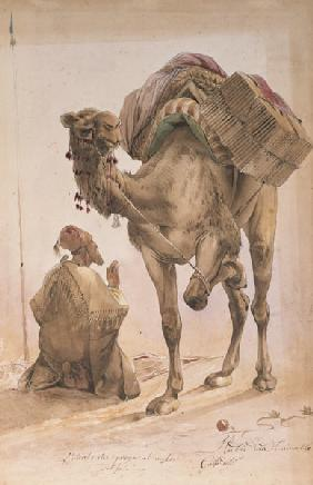 Praying Arab with a Secured Camel