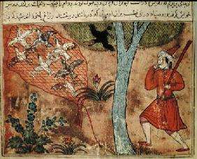 Hunting Birds, from 'The Book of Kalila and Dimna', from 'The Fables of Bidpay'