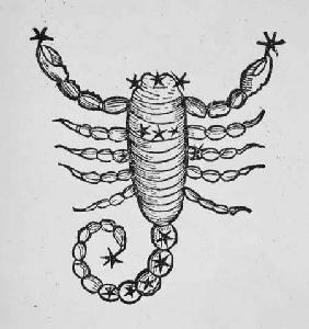 Scorpio (the Scorpion) an illustration from the 'Poeticon Astronomicon' by C.J. Hyginus, Venice 1485