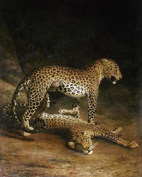 Kunstdruck von Jacques-Laurent Agasse - Two Leopards Lying In The Exeter Exchange