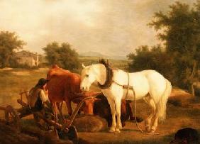 Kunstdruck von Jacques-Laurent Agasse - The Plough team resting