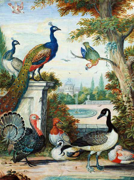 Exotic Birds and Domestic Fowl in a Picturesque Park early 18th