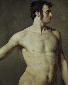 Ingres, Jean Auguste Dominique : M�nnlicher Torso