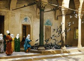 Harem Women Feeding Pigeons In A Courtyard