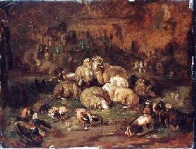 Kunstdruck von Johann Christian Reinhart - Sheep, Goats and Chickens