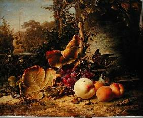 Fruit and Sparrows 1863