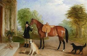 A Groom with a Horse