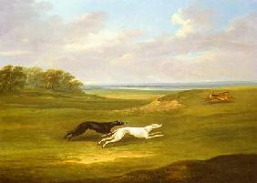 Running, a Coursing Scene 1816