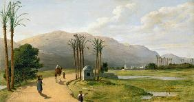 Asyut on the Nile 1873