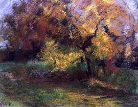 Autumn at May Banks, Sussex, 2000 (pastel on paper)