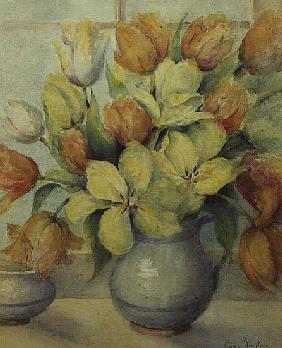 Mendel and Darwin Tulips on a Window Sill