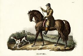 Spanish Hunter Horse 1824