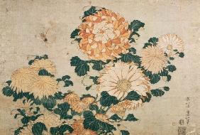 Kunstdruck von Katsushika Hokusai - Chrysanthemums