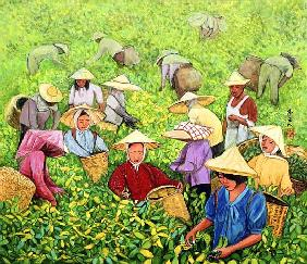 Tea Picking Girl, 1994 (gouache on silk)