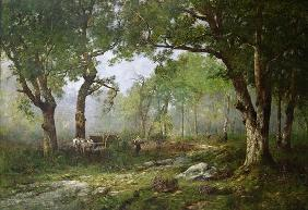 The Forest of Fontainebleau, 1890 (oil on panel) 16th