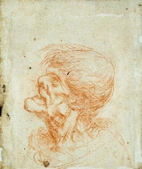 Caricature Head Study of an Old Man c.1500-05