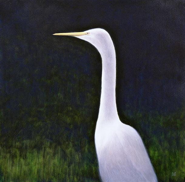 White Egret (oil on canvas)
