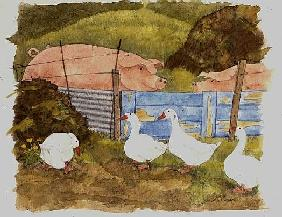 Pigs, Midden and Geese
